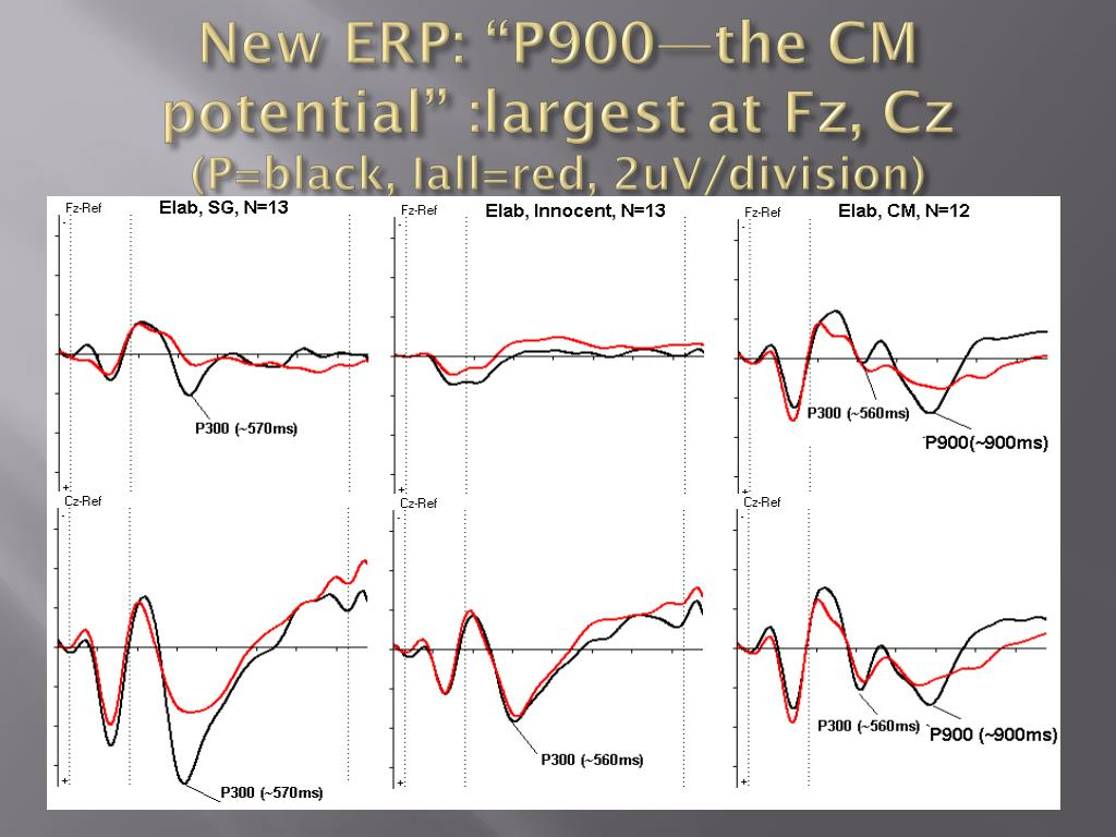 "New ERP: ""P900—the CM potential"" :largest at"