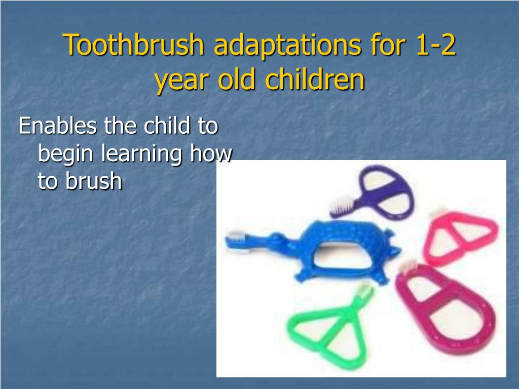 Enables the child to begin learning how to brush