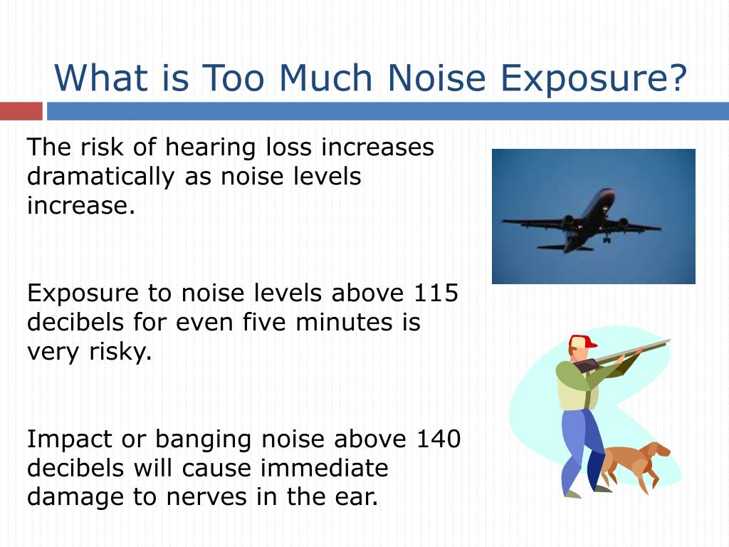 What is Too Much Noise Exposure?