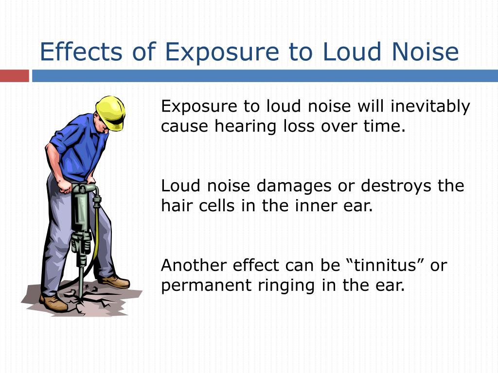 Effects of Exposure to Loud Noise