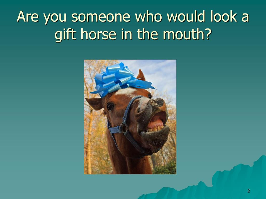 Are you someone who would look a gift horse in the mouth?
