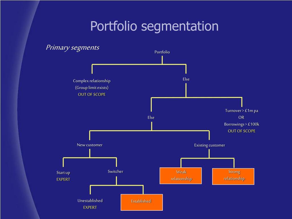 Portfolio segmentation