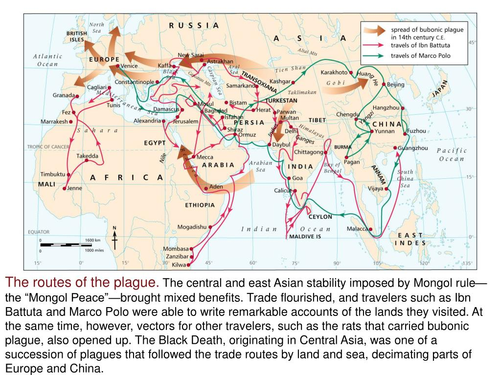 The routes of the plague.