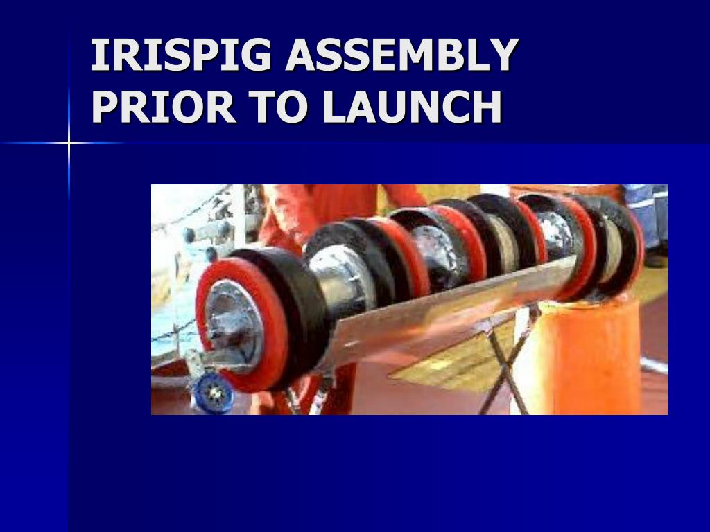 IRISPIG ASSEMBLY PRIOR TO LAUNCH