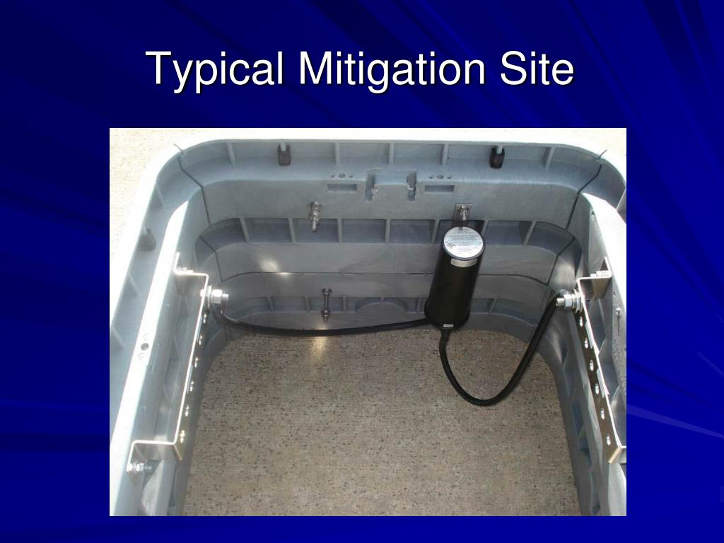 Typical Mitigation Site