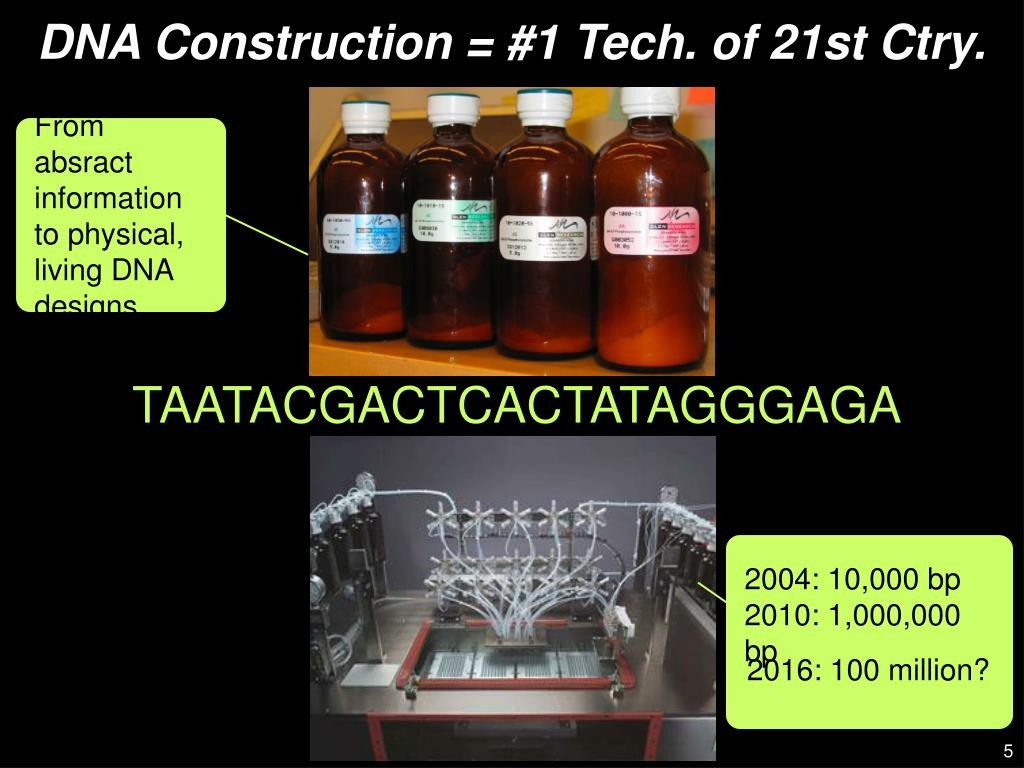 From absract information to physical, living DNA designs.