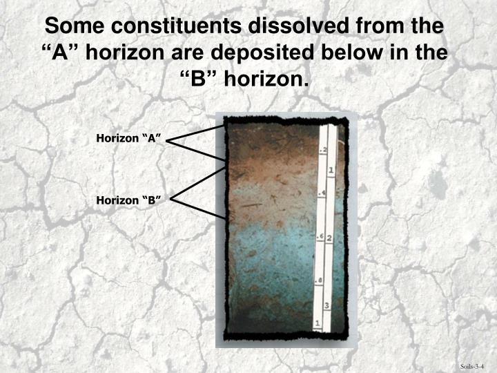 """Some constituents dissolved from the """"A"""" horizon are deposited below in the """"B"""" horizon."""