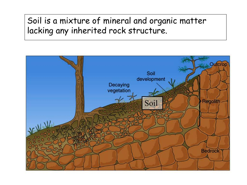 Soil is a mixture of mineral and organic matter lacking any inherited rock structure.