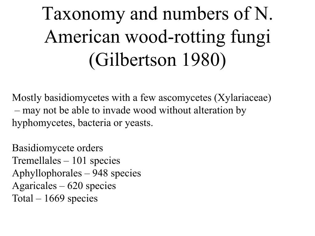 Taxonomy and numbers of N. American wood-rotting fungi