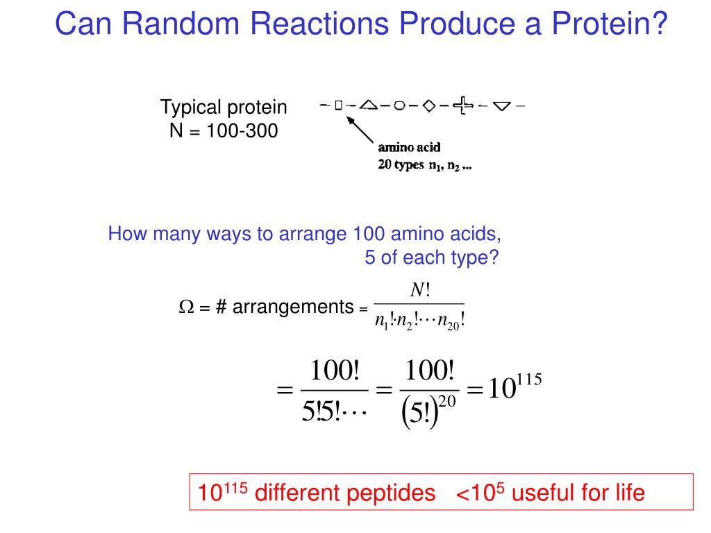 Can Random Reactions Produce a Protein?