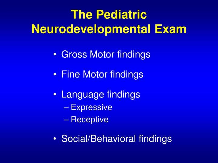 The Pediatric Neurodevelopmental Exam