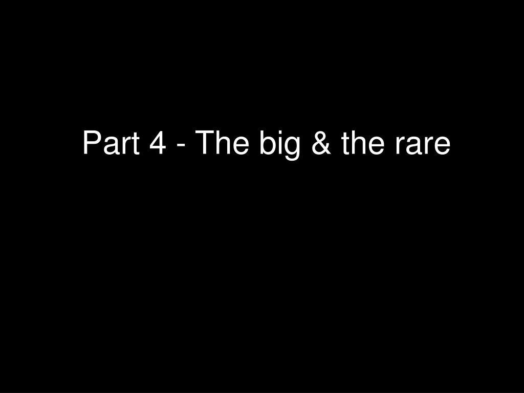 Part 4 - The big & the rare