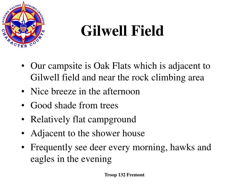 Gilwell Field