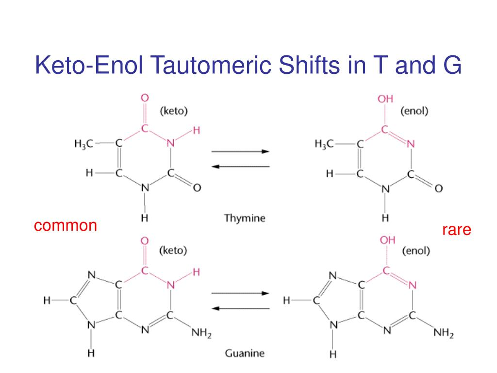 Keto-Enol Tautomeric Shifts in T and G