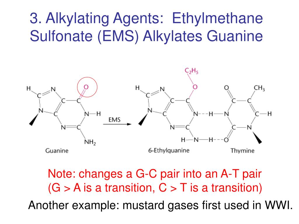 3. Alkylating Agents:  Ethylmethane