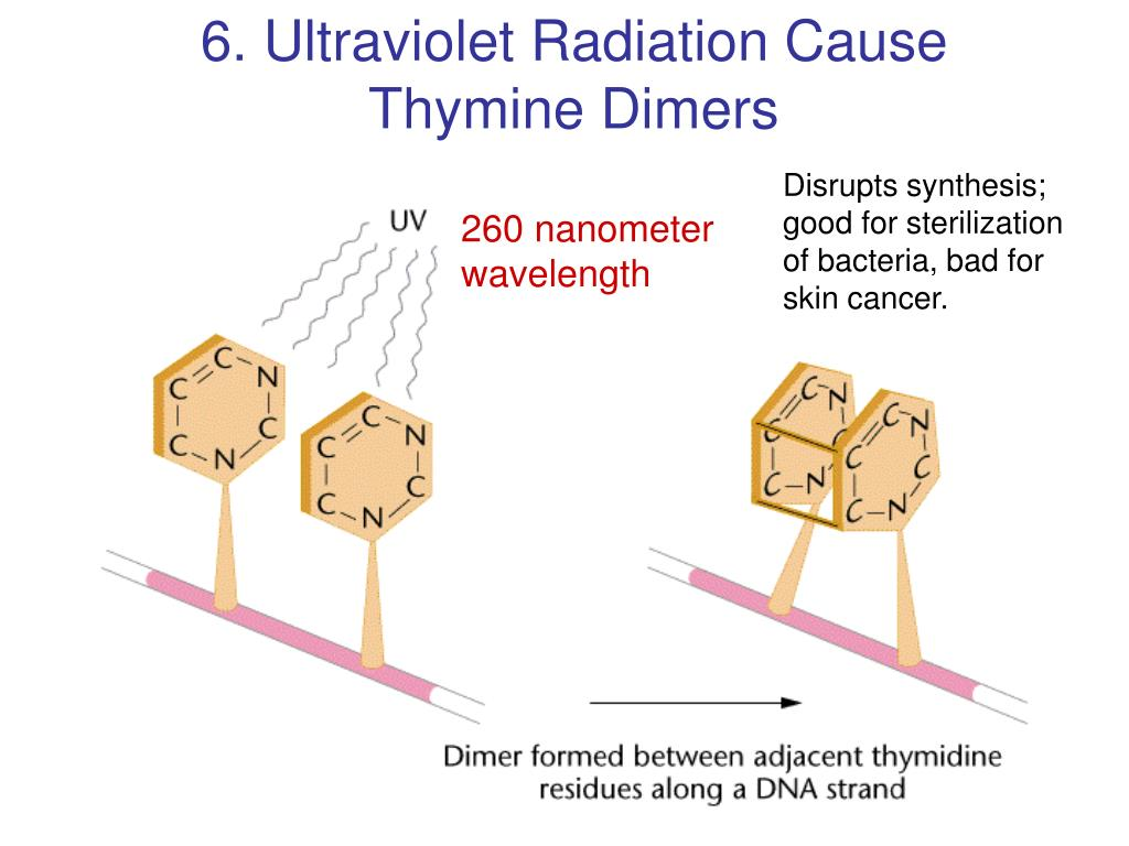 6. Ultraviolet Radiation Cause
