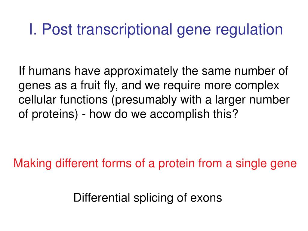 I. Post transcriptional gene regulation