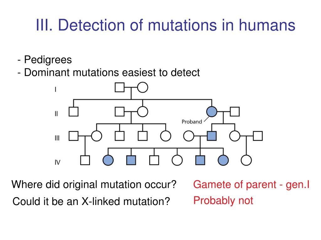 III. Detection of mutations in humans