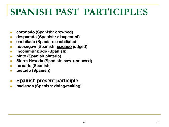 SPANISH PAST  PARTICIPLES
