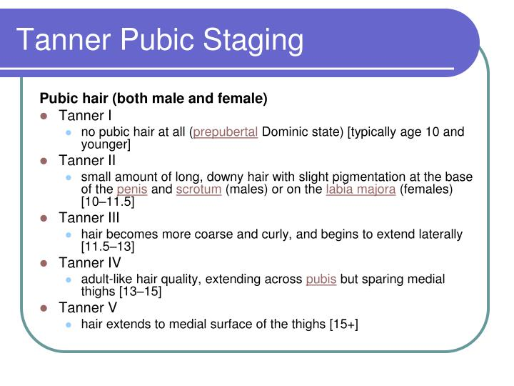 Tanner Pubic Staging