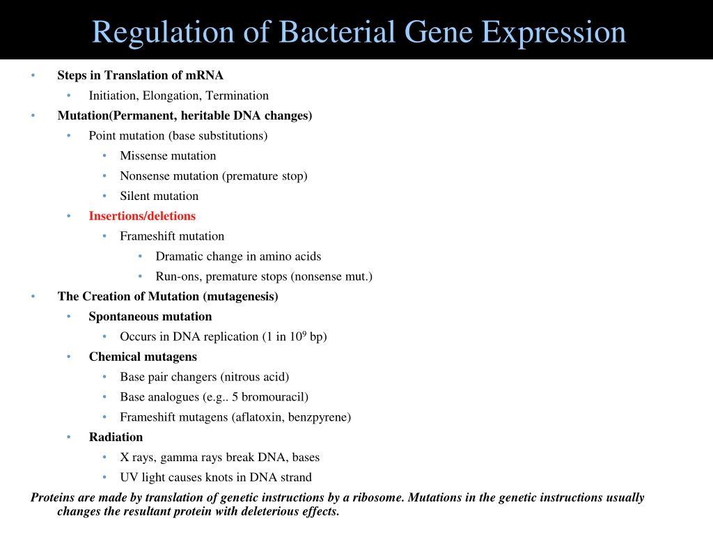 Regulation of Bacterial Gene Expression