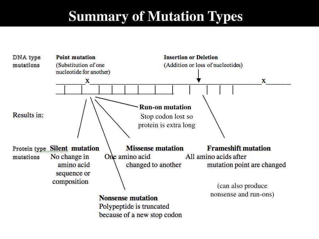 Summary of Mutation Types