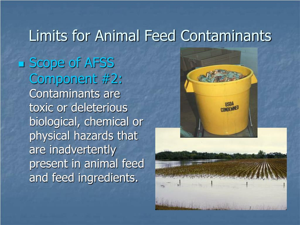 Limits for Animal Feed Contaminants