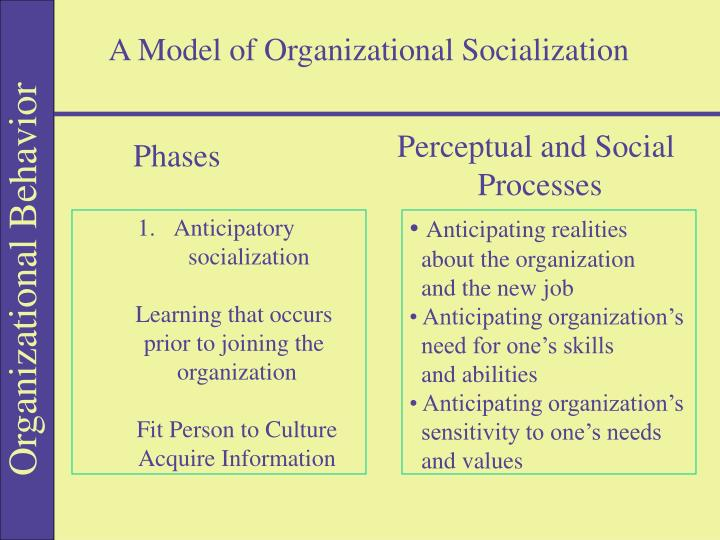 A Model of Organizational Socialization