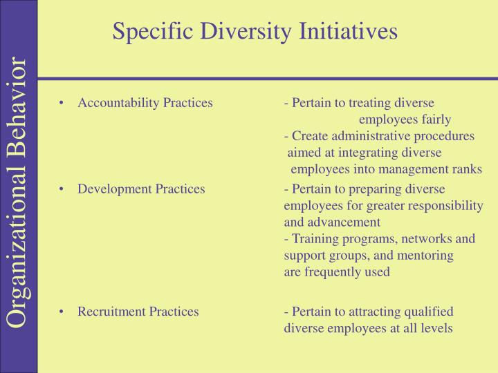 Specific Diversity Initiatives