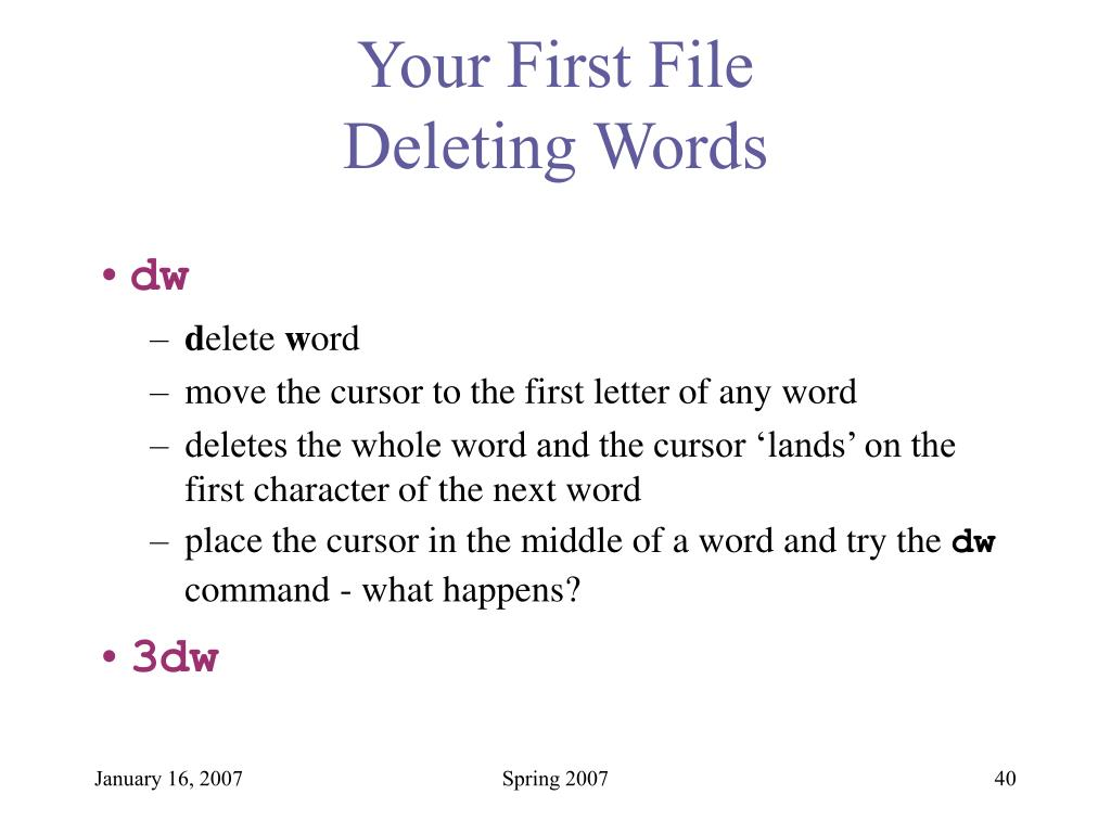 Your First File