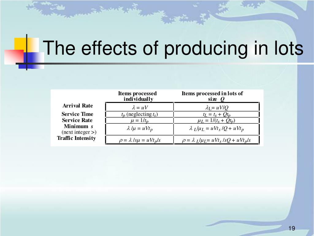 The effects of producing in lots