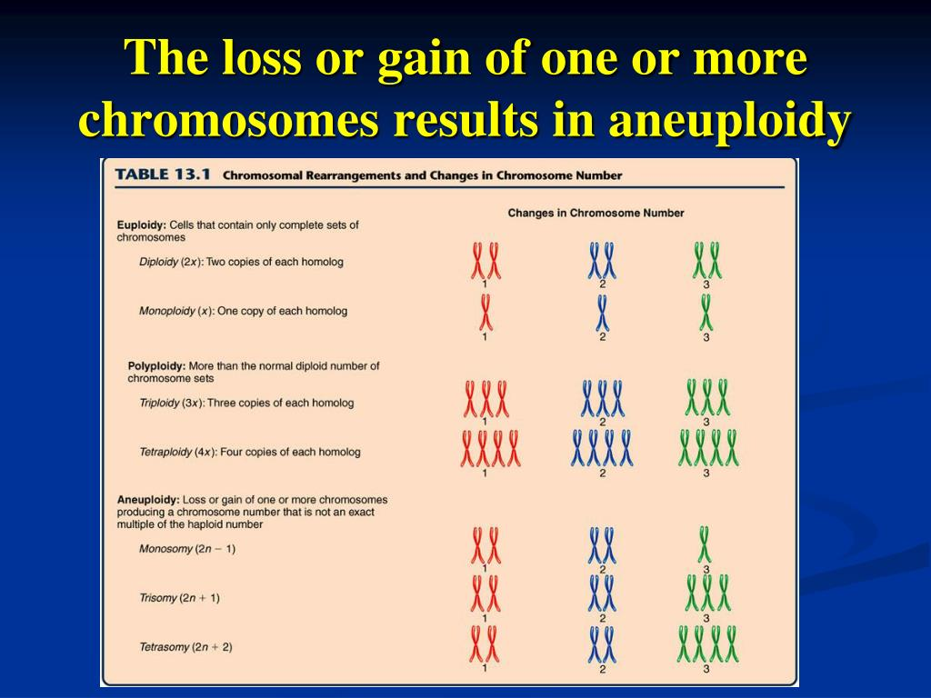 chromosomal rearrangements and changes in chromosome Chromosomal rearrangement examples of balanced chromosomal changes are reciprocal translocations such as the ph chromosome or inversions where chromosomal.