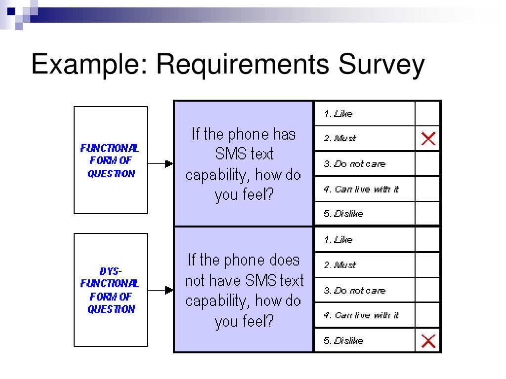 Example: Requirements Survey