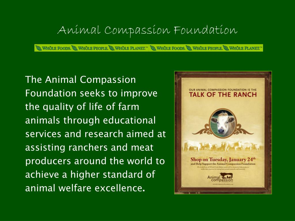 The Animal Compassion Foundation seeks to improve the quality of life of farm animals through educational services and research aimed at assisting ranchers and meat producers around the world to achieve a higher standard of animal welfare excellence