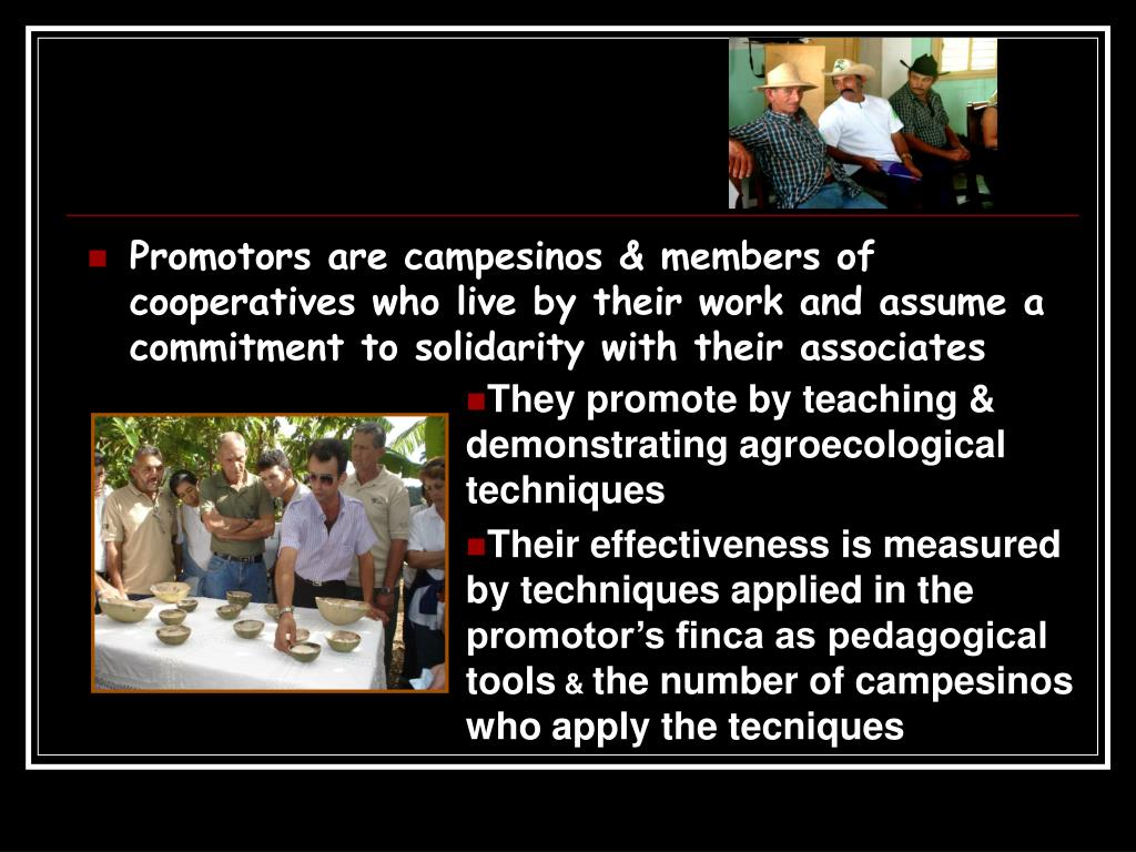 Promotors are campesinos & members of cooperatives who live by their work and assume a commitment to solidarity with their associates
