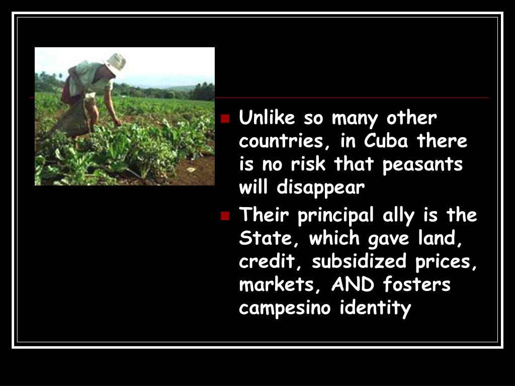Unlike so many other countries, in Cuba there is no risk that peasants will disappear