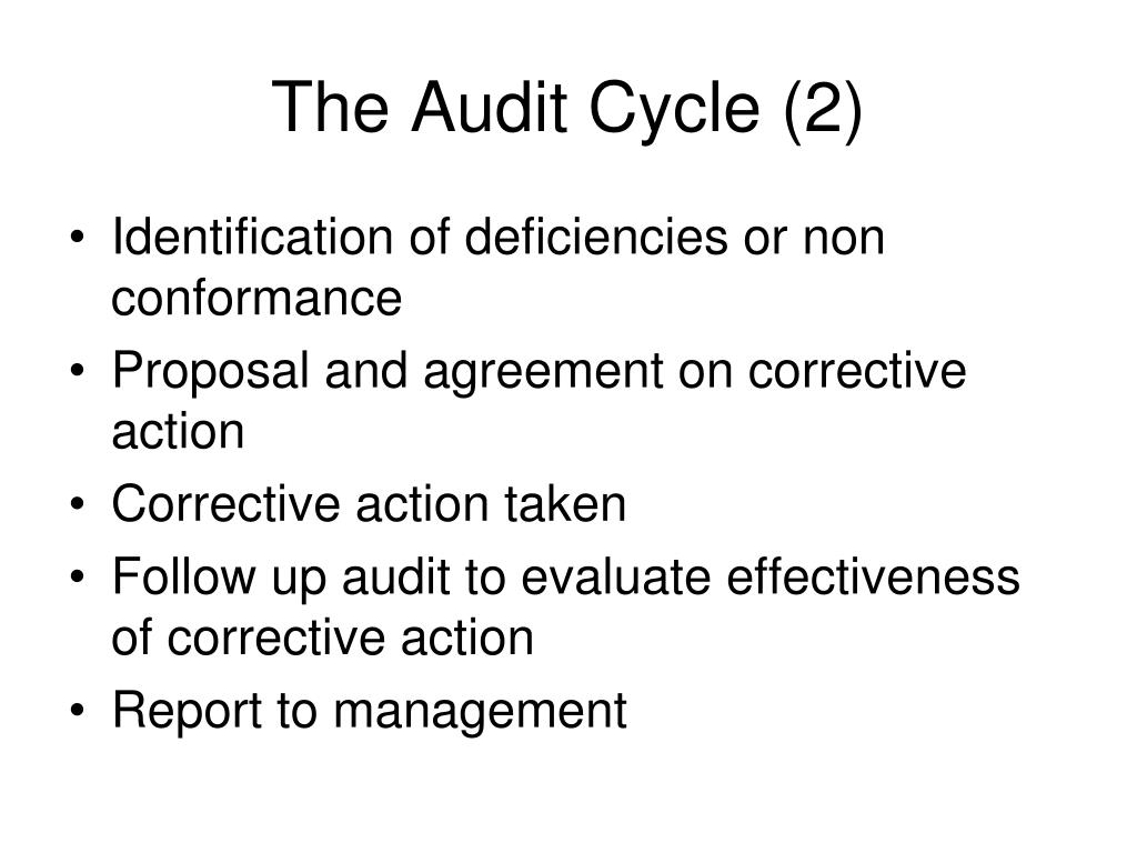 The Audit Cycle (2)