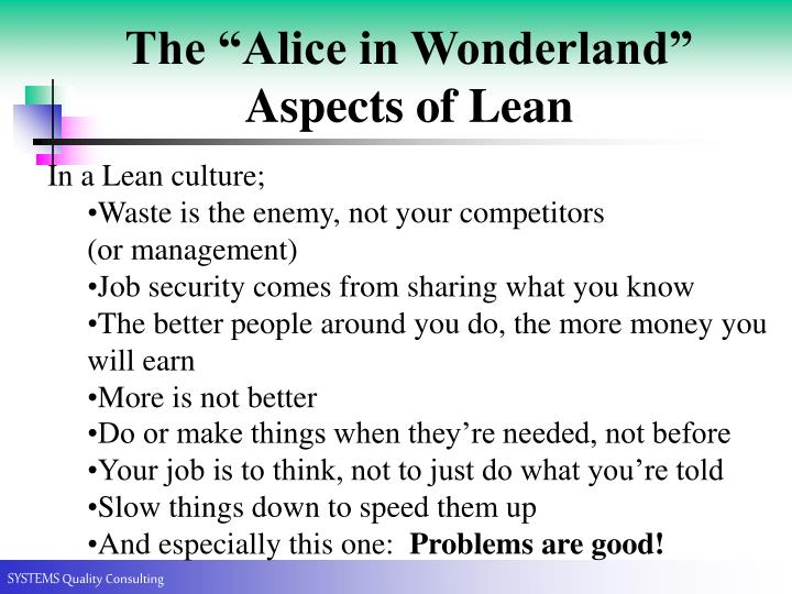 "The ""Alice in Wonderland"" Aspects of Lean"
