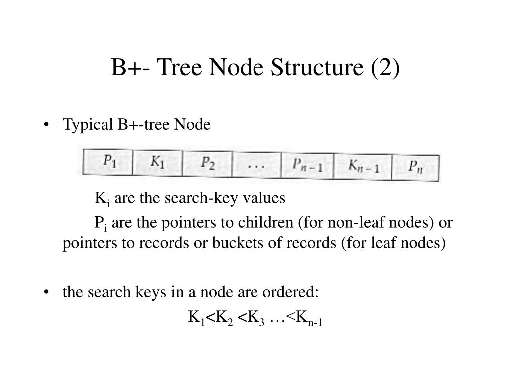 B+- Tree Node Structure (2)