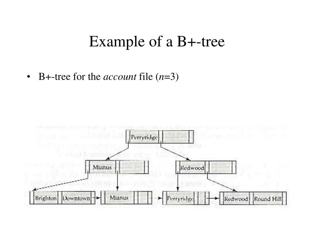 Example of a B+-tree