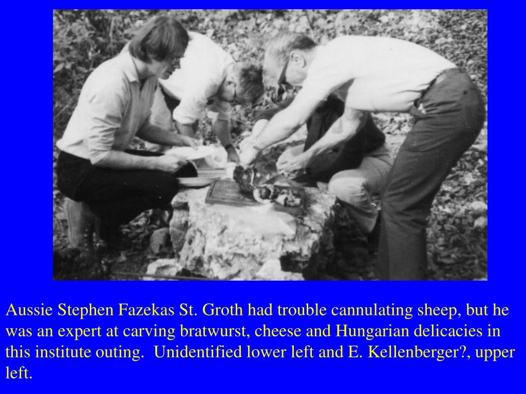 Aussie Stephen Fazekas St. Groth had trouble cannulating sheep, but he was an expert at carving bratwurst, cheese and Hungarian delicacies in this institute outing.  Unidentified lower left and E. Kellenberger?, upper left.