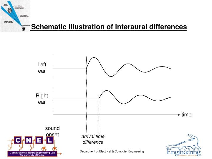 Schematic illustration of interaural differences