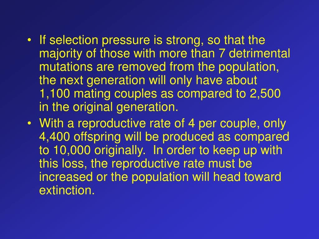 If selection pressure is strong, so that the majority of those with more than 7 detrimental mutations are removed from the population, the next generation will only have about 1,100 mating couples as compared to 2,500 in the original generation.