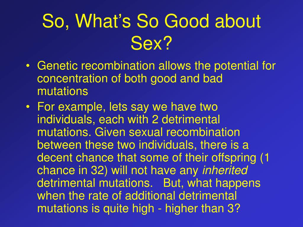 So, What's So Good about Sex?
