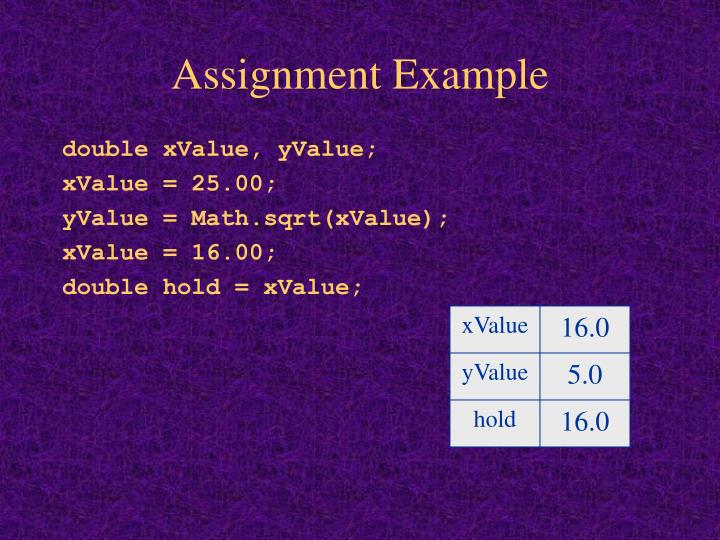Assignment Example