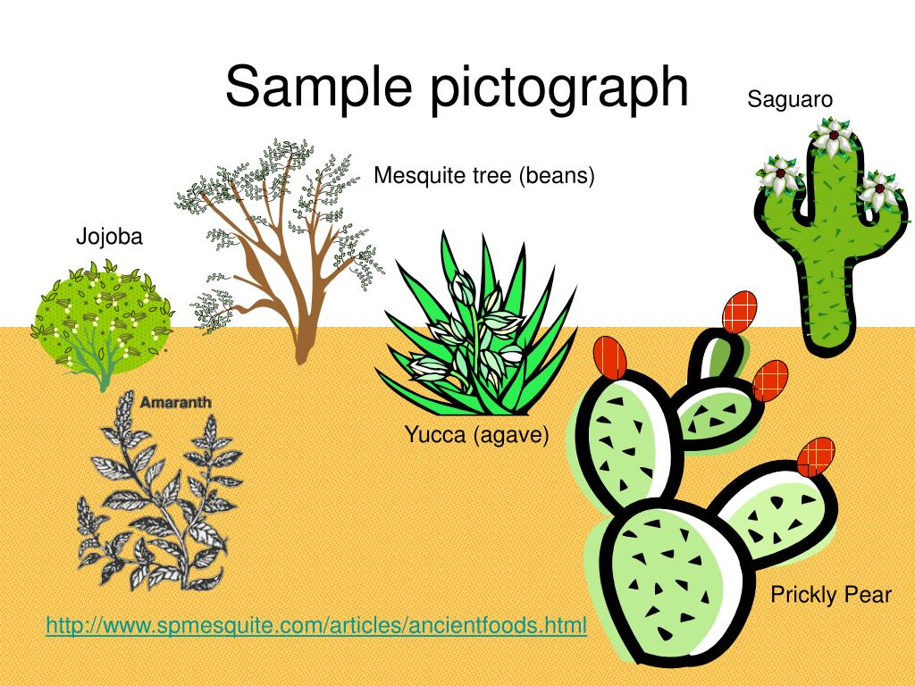 Sample pictograph