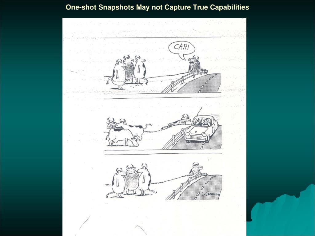 One-shot Snapshots May not Capture True Capabilities