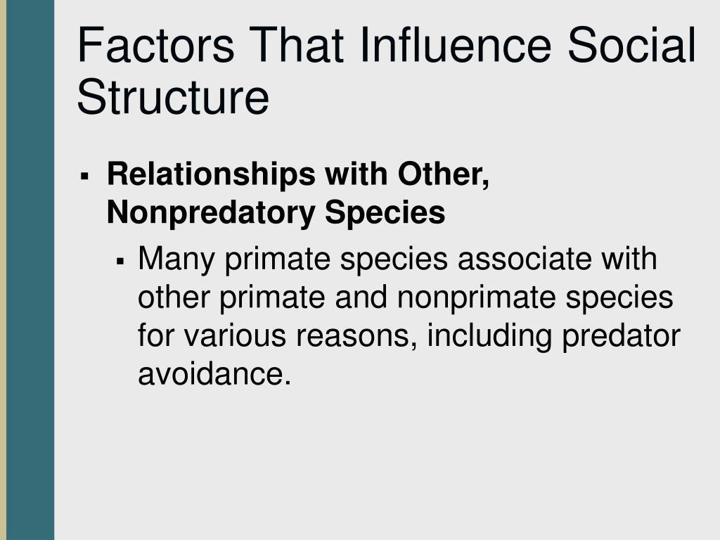 Factors That Influence Social Structure