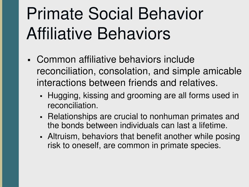 Primate Social Behavior Affiliative Behaviors