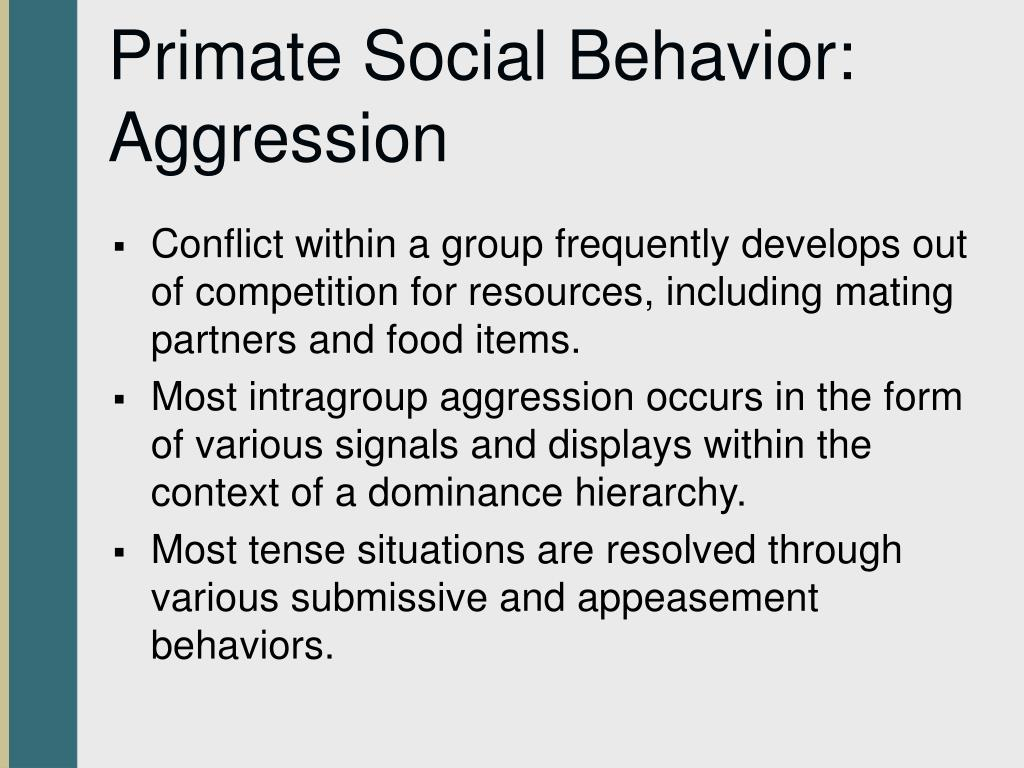 Primate Social Behavior: Aggression